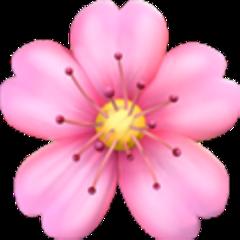 flor flowers flowor icon emoji