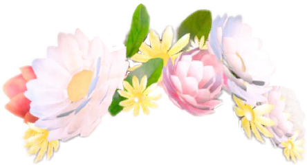 flower snapchat flowercrown filter sticker