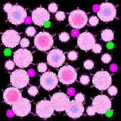 freetoedit colors colours colorsplash colorful