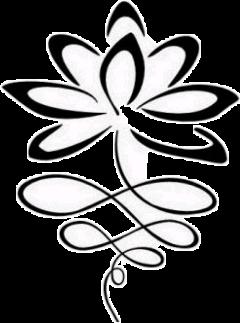 lotus freetoedit