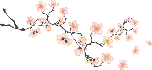 cherryblossoms chinese asian ftestickers freetoedit