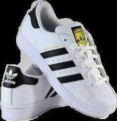 adidas superstar freetoedit