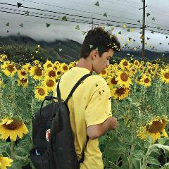 freetoedit sunflowerremix sunflowers🌻💛🌻 boy yellow