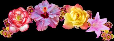 flower rose lotus crown snapchat