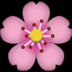 png emoji flower followback pink