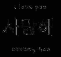 love sarang iloveyou saranghae korean