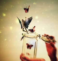 jar redbutterfly angel hand myedit freetoedit