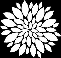 overlays flower white mandala complexediting
