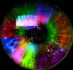 eye rainbow rainboweye eyes rainboweyes