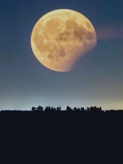 freetoedit lunareclipse2017 photography