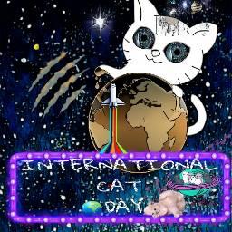freetoedit catstickers internationalcatday dailyremixmechallenge cute