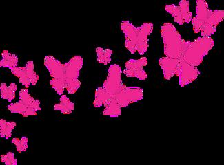 butterfly butterflies papillons mariposas ftestickers