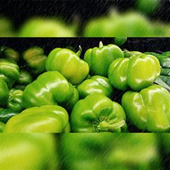 bellpeppers green food colorful photography