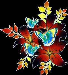 flowers flower butterfly butterflies tumblr