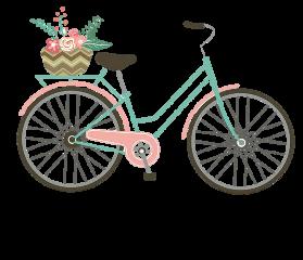 bike bicicleta freetoedit