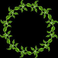leaves frame circleframe border ftestickers