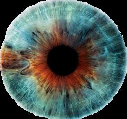 blue brown eye lens blueeye