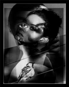 freetoedit art interesting surreal woman
