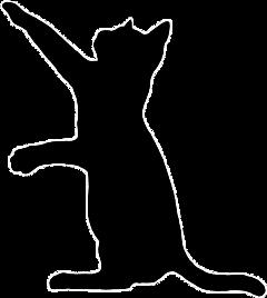 silhouettedechat freetoedit