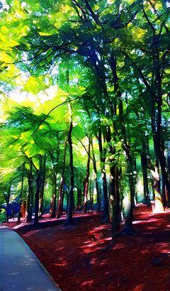 freetoedit woodland magic