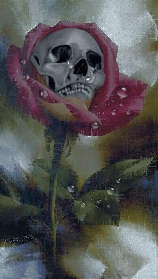 good night dear @pa friends 💞#madewithpicsart #myartwork #skull #roses #bokeh