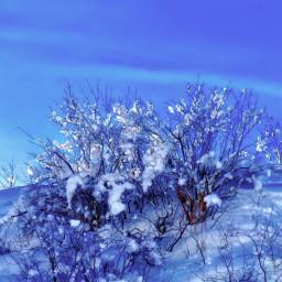 angeleyesimages landscape winter winterscene landscapephotography