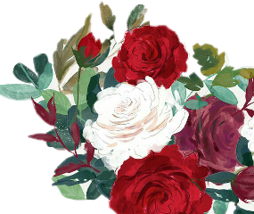 roses rosas flowers flowerstickers flowerscolors