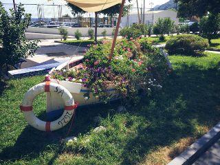 freetoedit summer boat flower sea