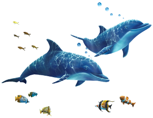 ftestickers dolphin fishes sea freetoedit