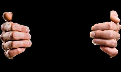 manos hands dedos freetoedit