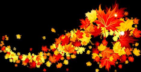 autumn leaves freetoedit