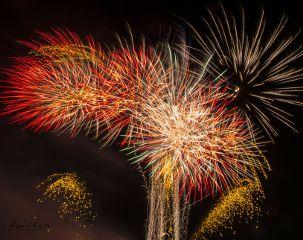 fireworks feuerwerk berlin pyrotalia2017 pyrotalia