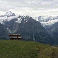dpcbenches freetoedit montain nieve paisaje