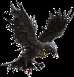 ftestickers bird freetoedit