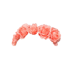 ftestickers flower flowercrown freetoedit