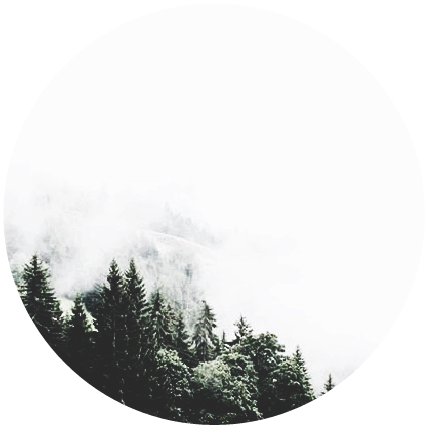 Mountainside fog  #mountain #forest #fog #mountainview #mountains #forests #tree #trees #evergreen #evergreens #evergreentrees #smoke #foggy #foggyday #foggymountain #foggymorning #mountainscape #pfp #pfpmaker #naturephotography #photography #nature #natural #pfpedit #pfpbackground #pfpgoals #cloudy #profilepic #profilepicture #profileicon #profilepictures #profilephoto #icon #icons #iconprofile