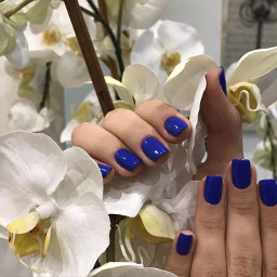 nails nail blue orchid flower freetoedit