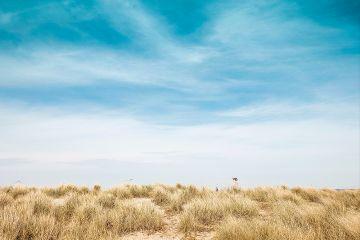 freetoedit nature blue sky grass