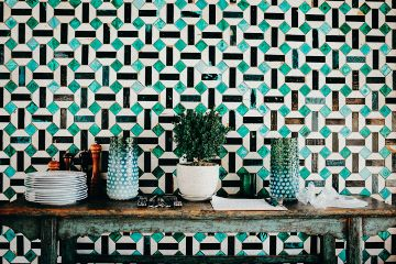freetoedit objects plants blue table