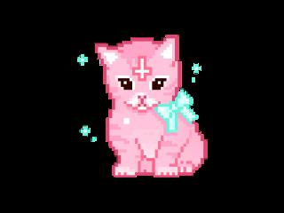 tumblr panda tiburón cute gatito