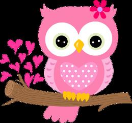 buho pink freetoedit