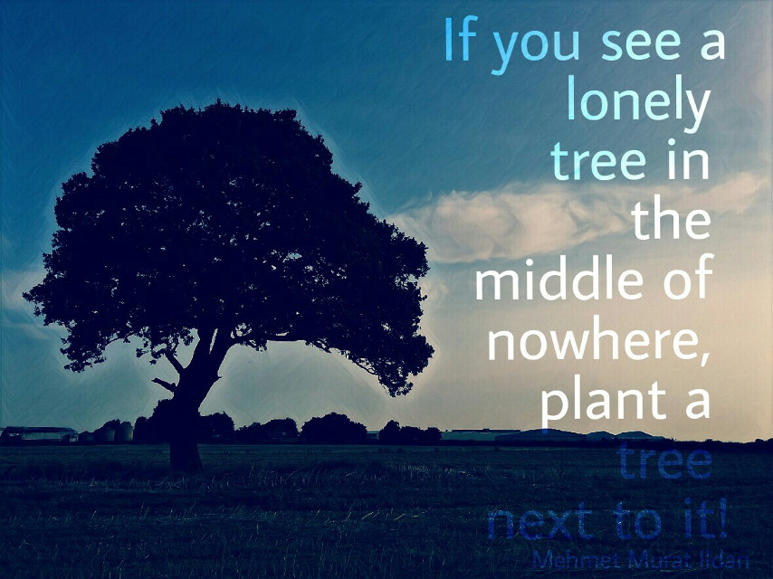 Just a little edit #lonelytrees #quotesandsayings #magiceffectmoonlight #textoverlay