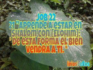 sendingthewordofyahweh fromcostarica byliriosbellos faith spiritualart