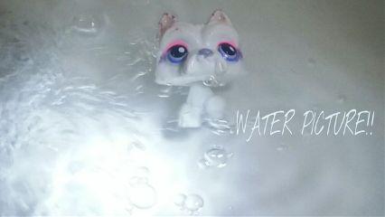 water boerd awsome feuter