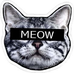 gato cat meow gatotumblr freetoedit
