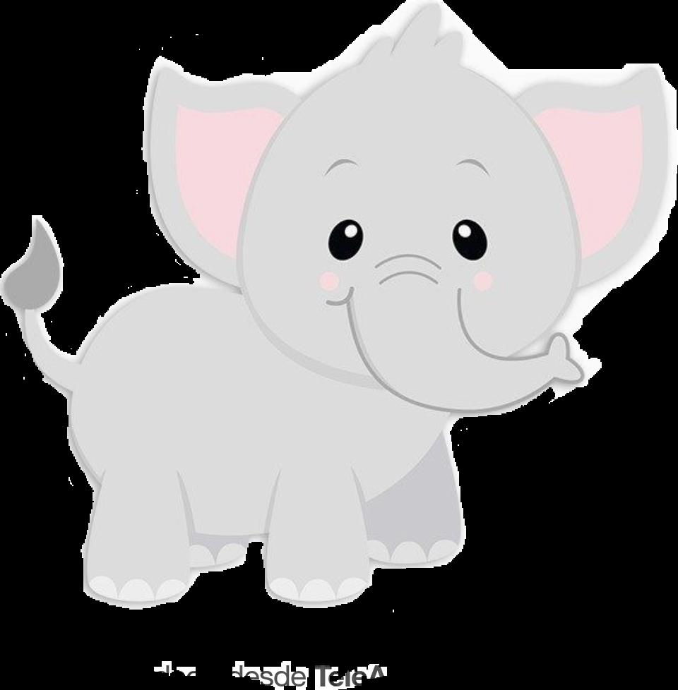 #babyelephant