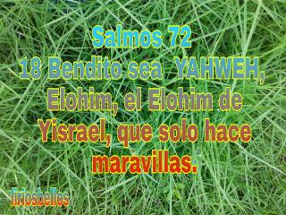 salmos spiritualart faith byliriosbellos fromcostarica