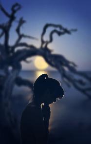 freetoedit silhouette moon tree loneliness