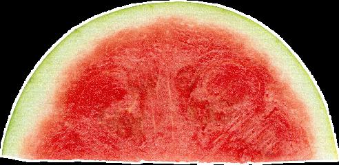 watermelon sticker sweet freetoedit