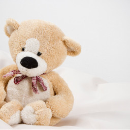 freetoedit teddybear bear toy objects